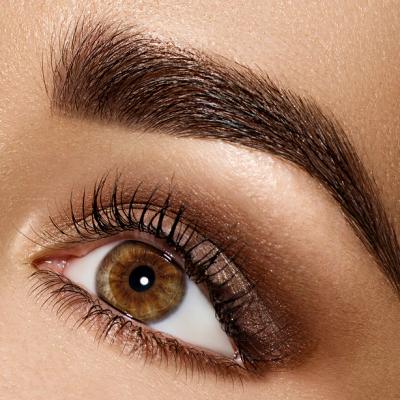 Beauty Brunette Woman Eye with Perfect Makeup. Beautiful Profess